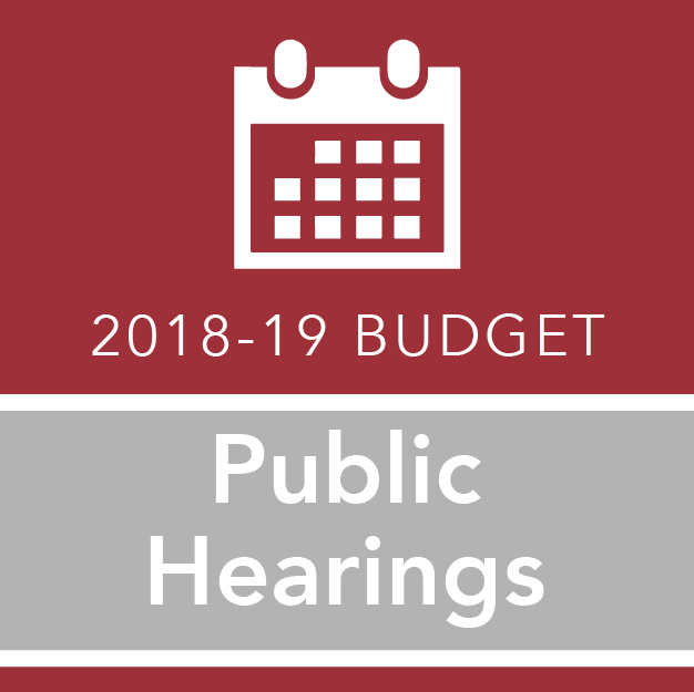 2018-19 Budget Public Hearings icon