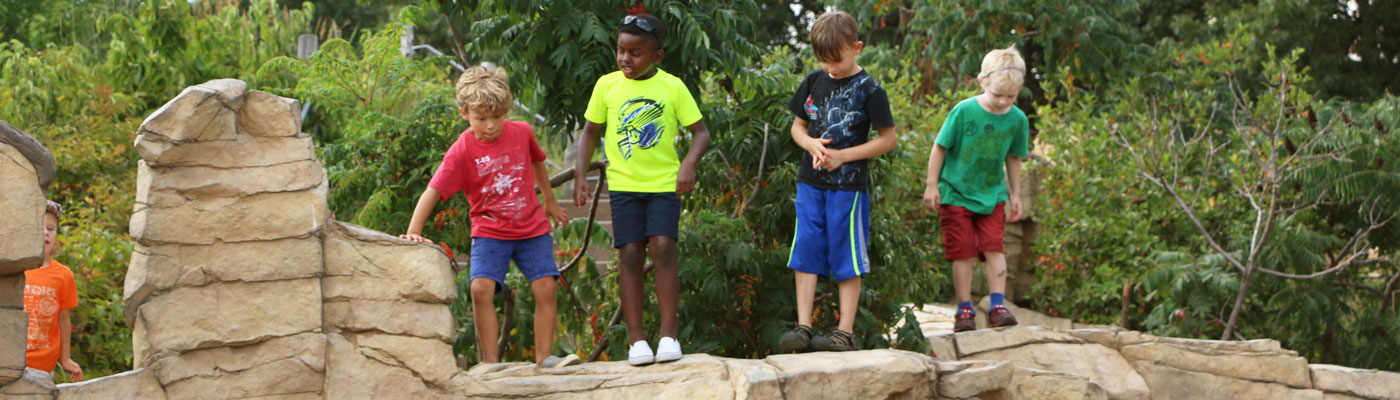 Kids can climb cliffs, play in the mud and build forts at Tamarack Nature Center's Discovery Hollow play area.