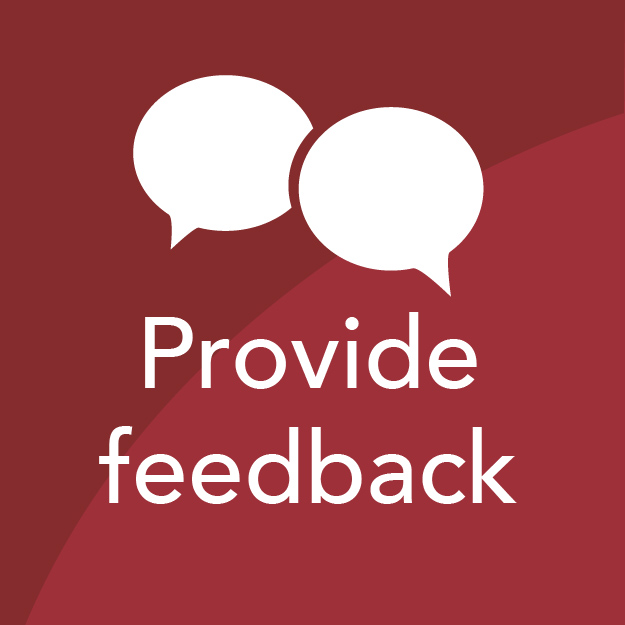 Provide feedback icon in red box