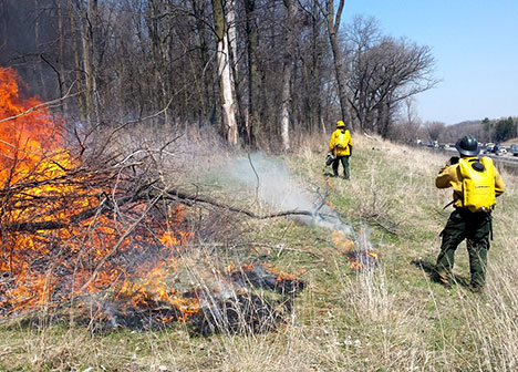 A spring burn at a Ramsey County park, monitored by two contractors in safety gear