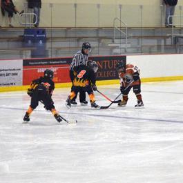 Skaters at Aldrich Arena