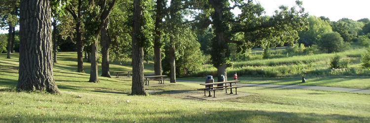Battle Creek Regional Park picnic area