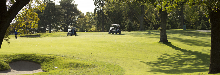 Golf carts at Keller Golf Course