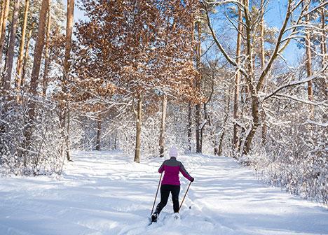 Person skiing at Vadnais Sucker Lakes Regional Park