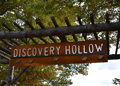 """Wooden sign that reads """"Discovery Hollow"""""""