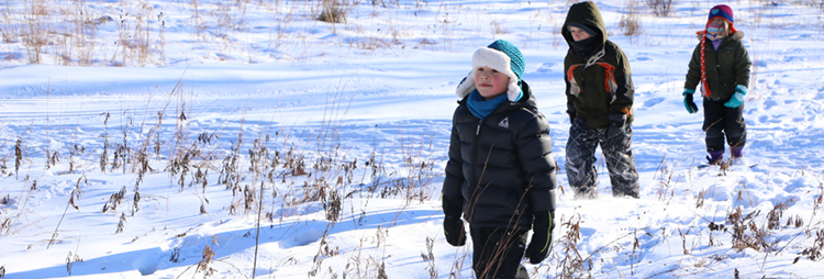 Snowshoeing at Tamarack Nature Center