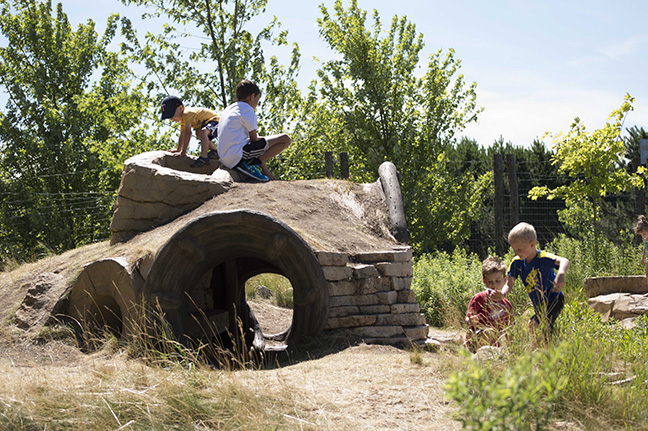 Hobbit house at Tamarack Nature Center's Discovery Hollow
