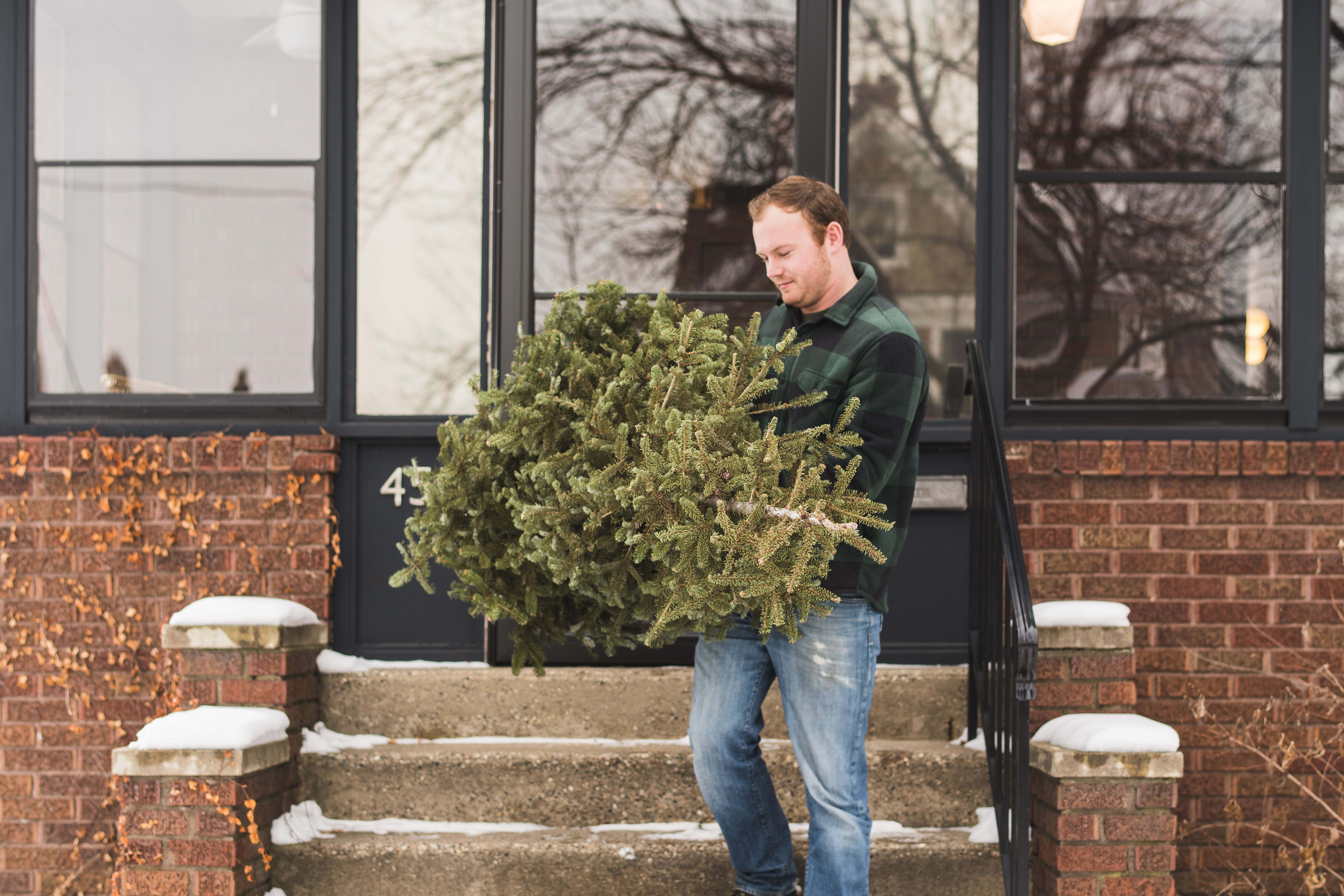 Man hauling a Christmas/holiday tree down the front steps of a house.