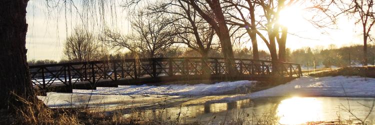 Photo of Bridge at Keller Regional Park by Elwyn Fraser