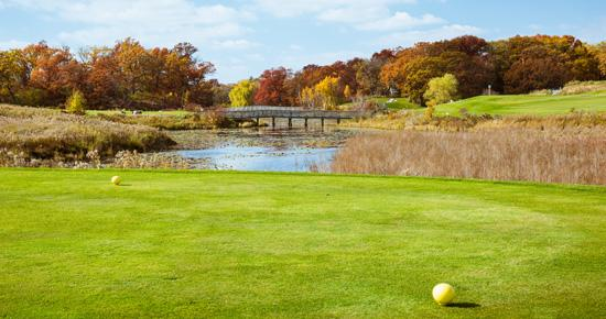 The Ponds at Battle Creek Golf Course