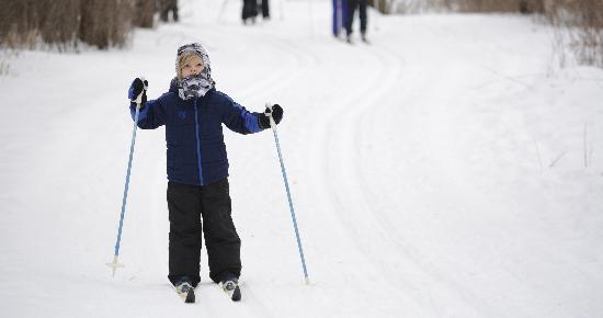 Boy cross country skiing at Tamarack Nature Center