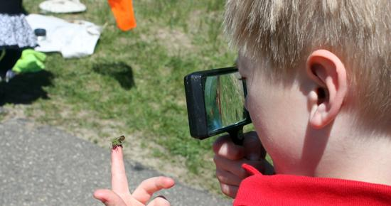 Preschooler exploring insects at Tamarack Nature Center