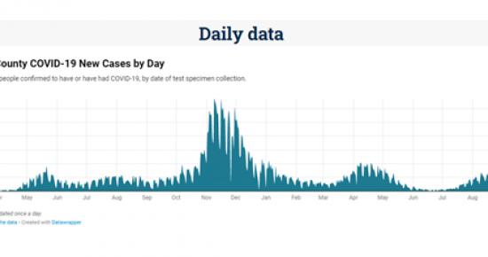 COVID daily data image