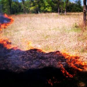 Controlled burn at Tamarack Nature Center