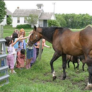 Children with horse at Gibbs Farm